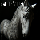 Photo de Halfi-Schleich