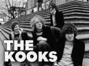 Photo de TheKooks-Brighton