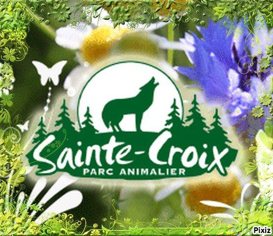 Sortie de fin d'année : Parc Animalier de Sainte-Croix 01 Juillet 2012
