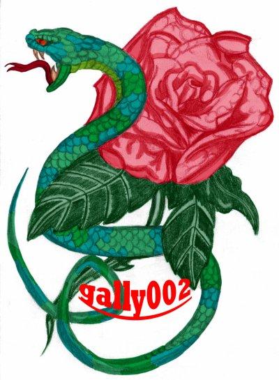 jolie rose avec serpent