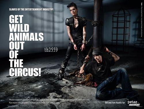 Non aux fourrures, oui à la défense des animaux.