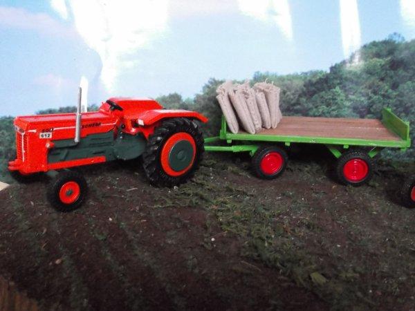 récolte de haricots