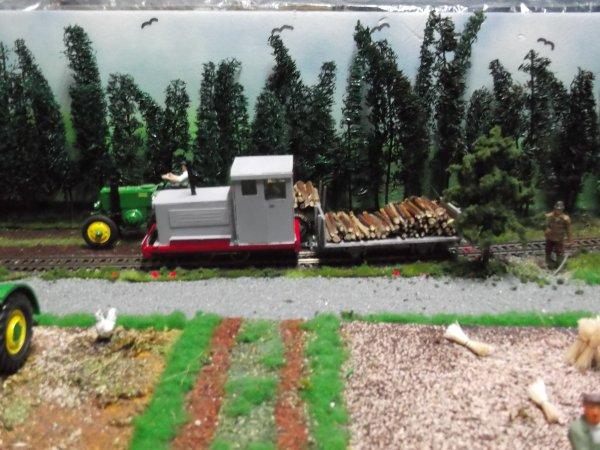 la loco diesel réalisée au 1/32 roulant sur une voie HO. permet d'animer le dio