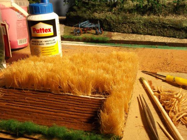 réalisation d'un champ de blé