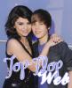 Top-Flop-Web