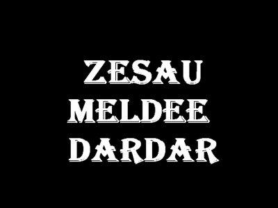ON A PAS LE CHOIX / ON A PAS LE CHOIX FEAT ZESAU - MELDEE & DARDAR (2010)
