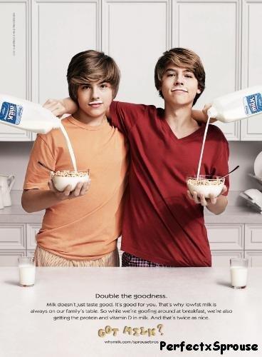 Cole & Dylan , Milk Compaign