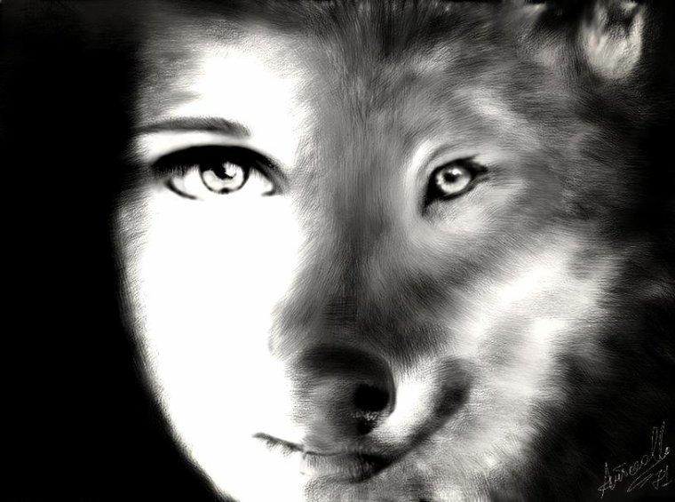 La Malédiction du Loup - Épilogue