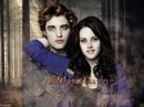 Photo de Twilight-QuiiZ