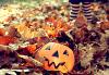 Happy Halloween !!!!!!!!!!!!!!!