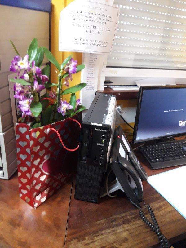 De belles orchidées pour notre new retraité