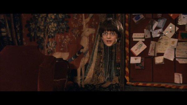 """""""Qu'est-ce que votre tête pouvait bien faire à Pré-au-lard, Potter ? Votre tête n'a pas le droit de se rendre là-bas. Aucune partie de votre corps n'a reçu l'autorisation d'aller à Pré-au-lard."""""""
