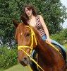 horsing-x3