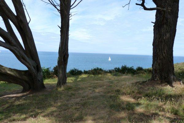 Un été à Saint-Quay-Portrieux et quelques photos plus tard... (2/2)
