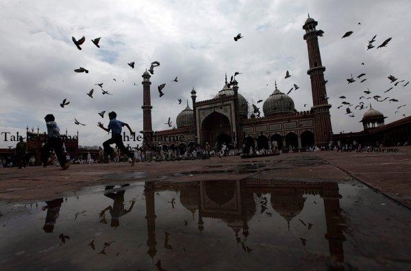 N'ont-ils pas vu les oiseaux assujettis [au vol] dans l'atmosphère du ciel sans que rien ne les retienne en dehors d'Allah? Il y a vraiment là des preuves pour les gens qui croient. (Sourate 16, verset 79)