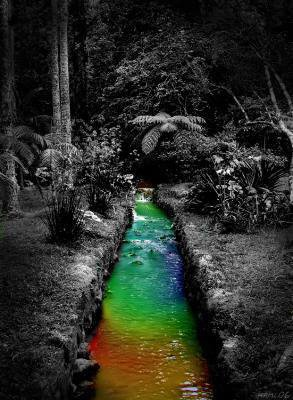 La vie est telle une rivière