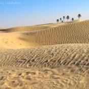 Comment faire pour se sortir de sables mouvants ?