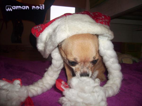 Christmas/maman noël