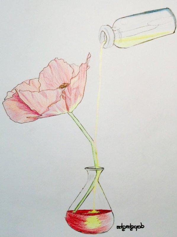 La fleur de la semaine £*