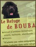 Photo de LeRefugeDeBouba