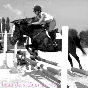 ● *Une Gamine Enerveiller par un beau et grand cheval noir* ●