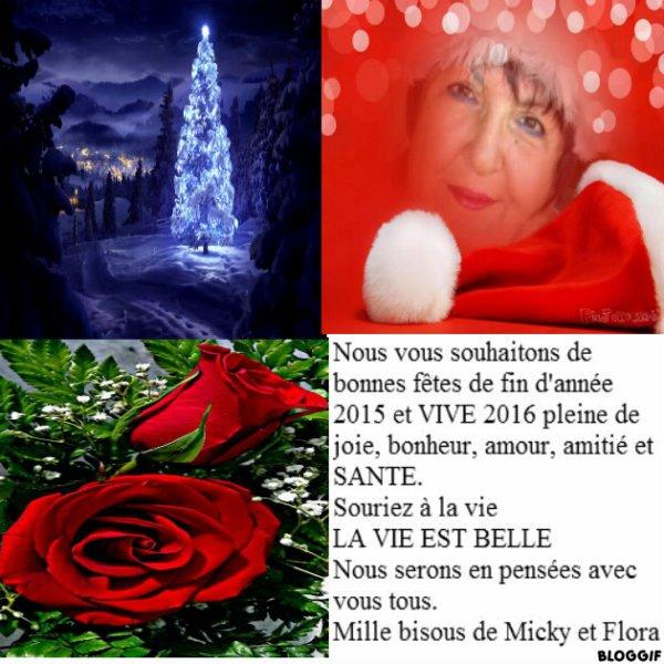 BELLES FETES DE FIN D'ANNEE 2015 ET VIVE 2016