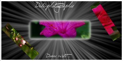 tatadidi08091993 alias  Didi-photographie ♥
