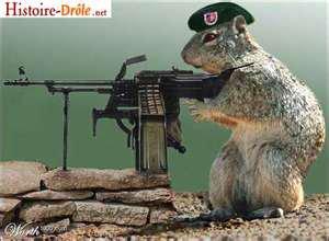 des animaux soldat