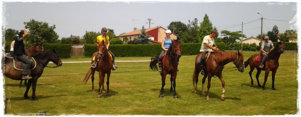 """Il n'y a pas de mauvais chevaux, il n'y a que de mauvais cavalier."""