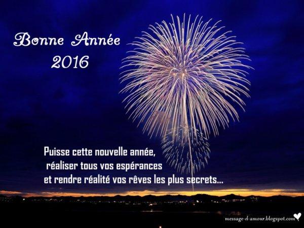 Bonne année à tous bisous