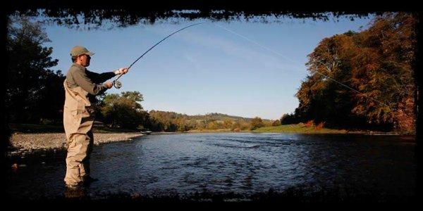 Pêcher à la ligne : les bonnes bases