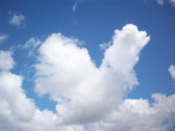 Un nuage en forme de coq !!!!