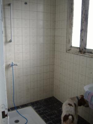 Salle d'eau avec douche et un évier . 2 fenêtres. maison a vendre sleepys.wood@hotmail.fr