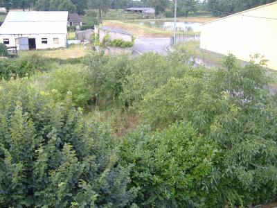 Jardin vu du toit. A proximiter d'un bassin d'orage . Maison a vendre sleepys.wood@hotmail.fr