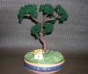 2959 bonsaï à Christelle et flo