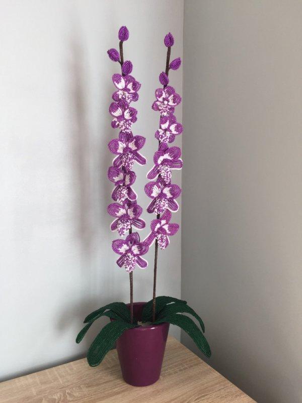 3081 une orchidée en perles de rocailles