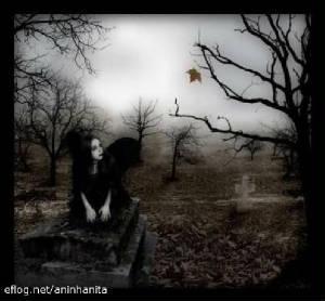 Dans un cimetière