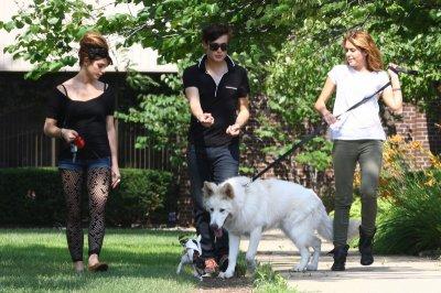 Miley Cyrus & Douglas Booth : A peine séparées de Liam le beau Australien , elle l'aurait déja remplacé avec son partenaire ( encore un partenaire ) de LOL .   Miley n'a pas perdu de temps !! Thank's & XooXoo