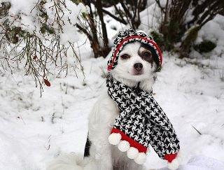 Le froid s'installe un peu partout.