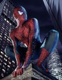 Photo de spiderman003