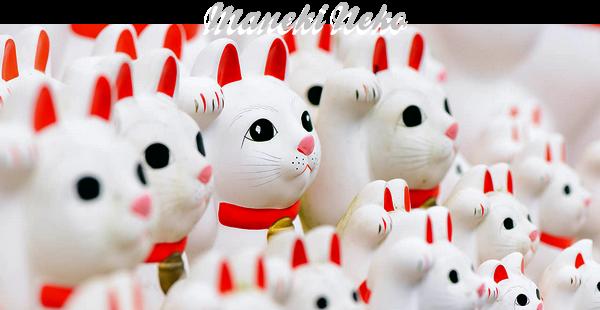 Le Maneki Neko, le chat porte bonheur