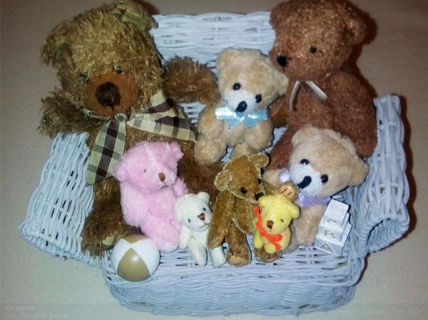 Une partie de mes minis ours
