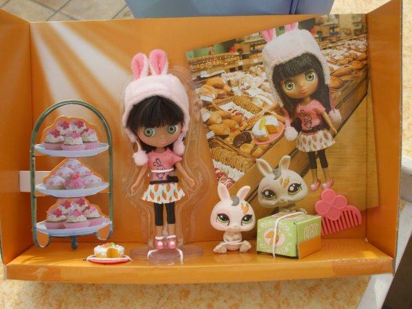 Ma collection de Mini-Blythe des Littlest PetShop