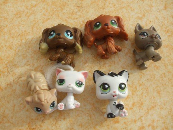 Mes mini Blythe Littlest PetShop incomplètes
