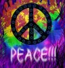 M-Peace-And-Love-C