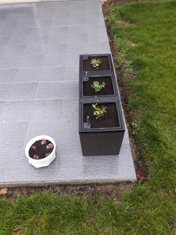 Notre Jardinage......