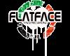 Flatface-X33