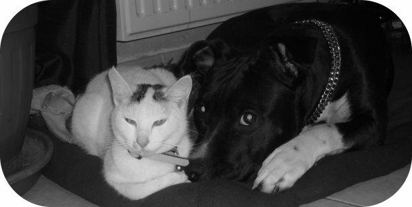Shiva et sa meilleure amie Louna
