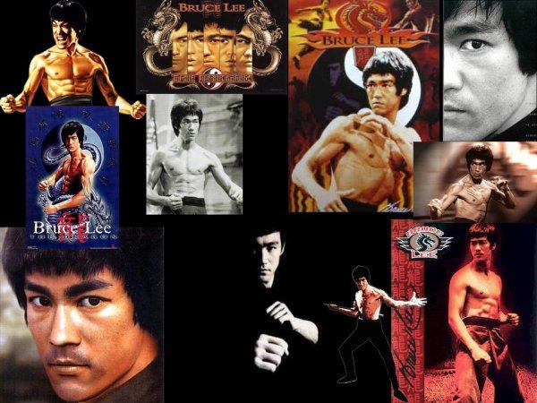 Bruce Lee  : EL MAESTRO