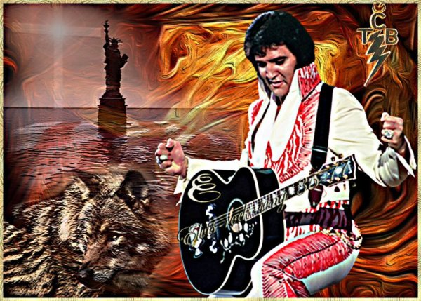 Elvis Presley    I Gotta Know